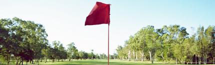 ゴルフパートナー事業 イメージ
